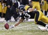 Troy Polamalu - '08 Pittsburgh Steelers