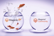 Magento Go to Magento Community Edition Migration Services