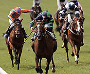 Tipsterchallenge.com free innovative horse racing competition free horse racing tips betting gambling flat national h...