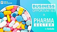 Business Opportunities in Pharma Sector in Ambala | Pharma Company