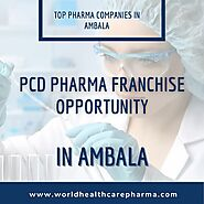 Top Pharma Companies in Ambala