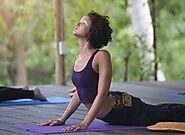 Yoga Activities - Retreats, Training and Courses