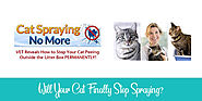 Cat Spraying No More Review - Read This Before Buying! | Raise a Cat