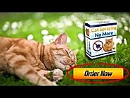 cat spraying no more review Archives - Makale Cat Cure