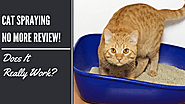 Cat Spraying No More Review — Does It Really Work? - Alexo - Medium