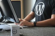 WordPress Website Design Guide: Things To Know Before Creating Wordpress Websites