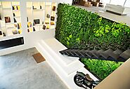 Plant Walls at Light Space Design