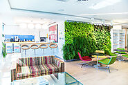 Company Lobby Living Green Walls
