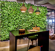 Reception Plant Wall