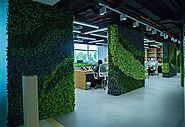 Artificial Plant Wall in the Office