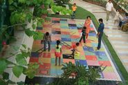 Rangoli - Metro Art Centre, MG Road