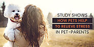 Study Shows How Pets Help To Relieve Stress in Pet-parents - CanadaVetExpress - Pet Care Tips