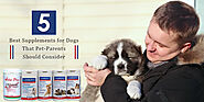 5 Best Supplements for Dogs That Pet-Parents Should Consider - CanadaVetExpress - Pet Care Tips