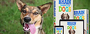 Brain Training for Dogs Review– What Should You Expect from This Dog Training Program?