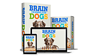 Brain Training For Dogs Review – Adrienne Farricelli's Dog Training Guide Any Good?