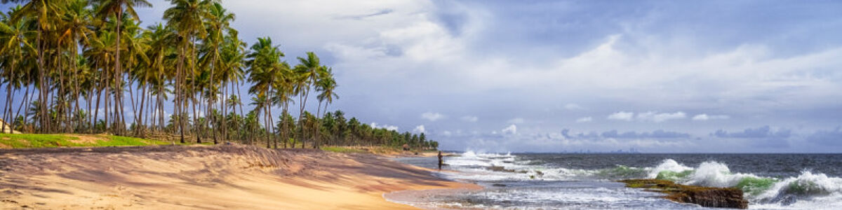 Headline for Things to do in Negombo – Explore a Picturesque City by the Coast