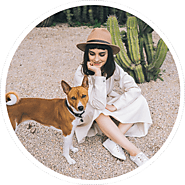 Avianca Pet Policy In Support Of Pet Travel In Flights