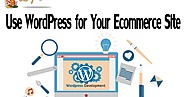 Use WordPress for Your Ecommerce Site