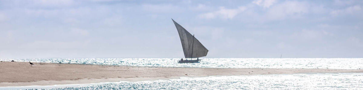 Headline for 5 Adventurous Things to Do in Mozambique – Enjoy the island to the fullest