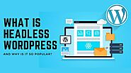 What Is Headless WordPress And Why Is It So Popular?