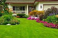 Choosing a landscape company in Edinburg, TX