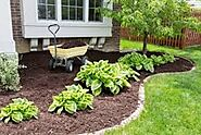 Are you looking for mulching service in McAllen, TX?