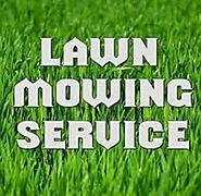 Are you looking for lawn mowing service in Edinburg, TX?