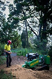 Tree Stump Removal Melbourne | ArborCraft Tree Services