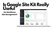 Is Google Site Kit Really Useful For WordPress Site Management? — Steemit