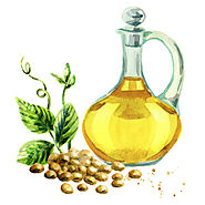 Healthy Cooking Oil — Soybean Oil - Discover Useful And Nutritious Facts