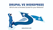 WordPress vs Drupal – Which One is Better in 2021? - Elsner