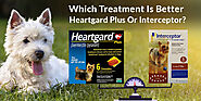 Which Treatment Is Better – Heartgard Plus Or Interceptor?