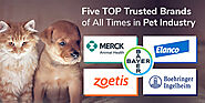 Pet Parent Guide: 5 Top Trusted Brands of All Times in Pet Industry
