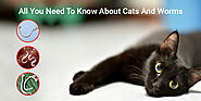 All You Need To Know About Cats And Worms - CanadaVetCare Blog