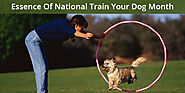 Essence Of National Train Your Dog Month