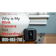 Blink Camera Not Working Red Light 1-8009837116 Blink Camera Not Recording