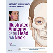 Shop Now! Illustrated Anatomy of the Head and Neck, 5th Edition