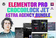 I will install elementor pro astra agency and crocoblock licensed updatable