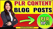 Split The Content to Use as Blog Posts | How to Use Private Label Rights Content | TIP#1