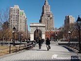 The largest university – NEW YORK UNIVERSITY