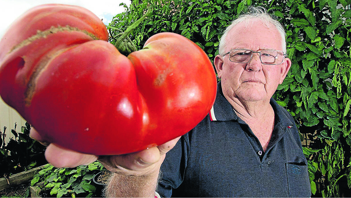 Headline for Size matters! A list of the biggest things in the world.