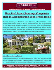 Real Estate Tauranga Help in Solving The Legal Issues