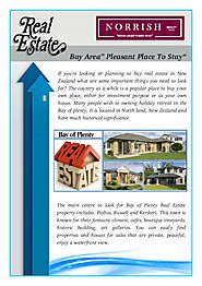 Planning To Buy Real Estate in New Zealand