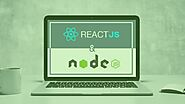 How ReactJS And Node Back-end Server API Are Helpful While Developing An App
