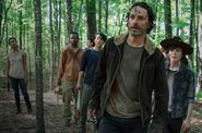 The Walking Dead Sets TV, Twitter Ratings Record