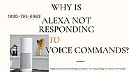 Alexa Dot Does Not Respond 1-8007956963 Alexa Slow to Respond -Call Anytime.