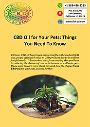 CBD Oil for Pets - Flower Of Life CBD