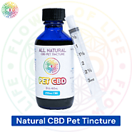 Natural CBD Pet Tincture - Flower Of Life CBD