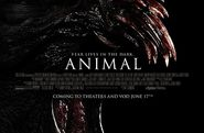 Animal Movie 2014 Watch Online 720p BLURay Download