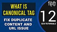 What is Canonical Tag in Hindi | Why You Should Add | Fix Duplicate Content & URL